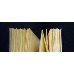 GENESES de SAINT-POL-ROUX Librairie Automobile SPE 9782856682340