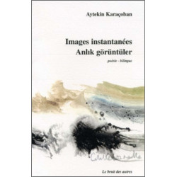 IMAGES INSTANTANÉES - ANLIK GORUNTULER Librairie Automobile SPE 9782909468846